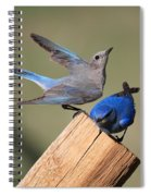 A Great Pair Spiral Notebook