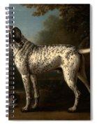 A Grey Spotted Hound Spiral Notebook
