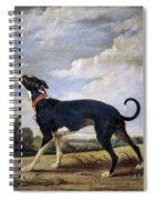 A Greyhound Lurking Spiral Notebook