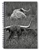 A Highland Cattle In The Scottish Highlands Spiral Notebook