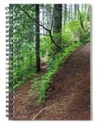 A Hiking Trail Goes Up Saddle Mountain Spiral Notebook