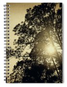 A Hint Of Sunshine Spiral Notebook