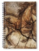 A Horse - Cave Art Spiral Notebook
