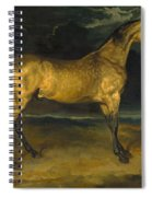 A Horse Frightened By Lightning Spiral Notebook