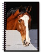 A Horse Is A Horse Of Course By Diana Sainz Spiral Notebook