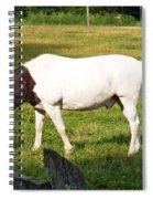 A Horse Named Dipstick Spiral Notebook