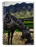A Horse With No Name Spiral Notebook
