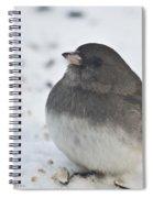 A Junco Spiral Notebook