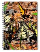 A Kaleidoscope Of Butterflies Spiral Notebook