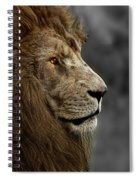 A King's Look Spiral Notebook