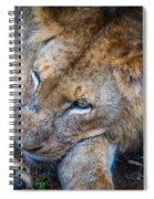 A King's Slumber Spiral Notebook