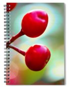A Kiss Of Spring    A Promise Of Summer Spiral Notebook