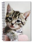 A Kittens Helping Hand Spiral Notebook