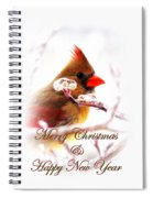A Lady For Christmas - Cardinal Card Spiral Notebook