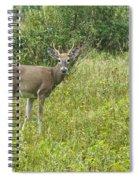A Late Summer's Morning Spiral Notebook