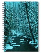 A Leaning Tree Over The Little Naches River Spiral Notebook