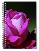 A Light Blue Rose  Spiral Notebook