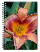 A Lily's Golden Heart Spiral Notebook