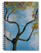 A Little All Over The Place Spiral Notebook