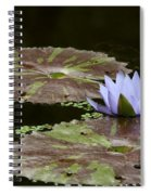 A Little Lavendar Water Lily Spiral Notebook