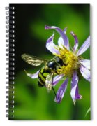 A Little Nectar Seeking Fruit Fly Spiral Notebook