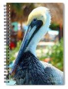 A Little Ruffled Spiral Notebook