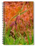 A Little Spring Miracle Spiral Notebook