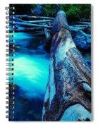 A Log Over Rapids Spiral Notebook