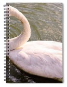 A Lone Swan Named Gracie Spiral Notebook