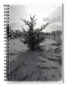 A Lonely Little Prairie Ceder Spiral Notebook