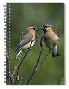 A Love Duet... Spiral Notebook