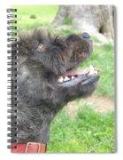 A Loyal Friend Spiral Notebook
