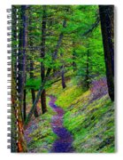 A Magical Path To Enlightenment Spiral Notebook