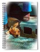 A Man And His Dog Oil Spiral Notebook