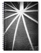 A Map On A Leaf Spiral Notebook
