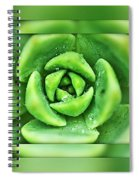 A-maze-in-nature Spiral Notebook