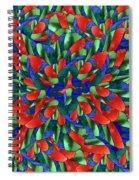 A Maze Of Nature Spiral Notebook
