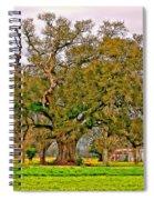 A Mighty Oak Spiral Notebook