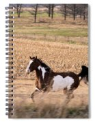 A Moment Of Freedom Spiral Notebook