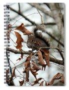 A Moment's Glance Spiral Notebook