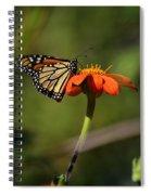 A Monarch Butterfly 1 Spiral Notebook