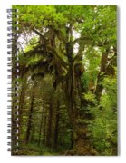 A Moss Covered Tree  In The Ho National Rain Forest Spiral Notebook