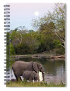 A Mother And Child Spiral Notebook