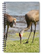 A Mother's Lesson Spiral Notebook