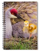 A Mother's Lovely Touch Spiral Notebook