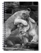 A Mother's Patience Spiral Notebook