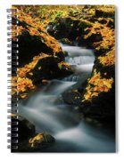 A Mountain Stream Carves A Path Spiral Notebook