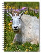 A Mouthful Of Flowers Spiral Notebook