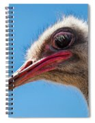A Mug Only A Mother Could Love. Spiral Notebook
