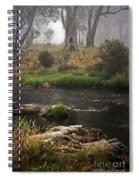 A Mystical Place Spiral Notebook